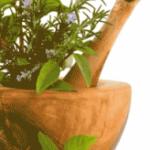 piante-officinali_02